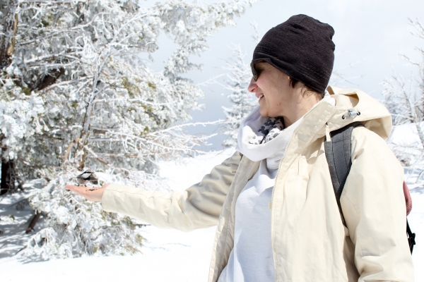 A woman in snow gear holding her hand out with a bird eating seed from her hand with snow and trees in the background.